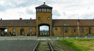 A Shockingly Low Number Of Americans Know Anything About The Holocaust