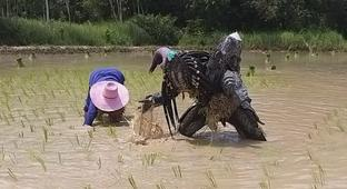 Here's A Video Of The Predator Farming And, Yes, We Are Also Very Confused
