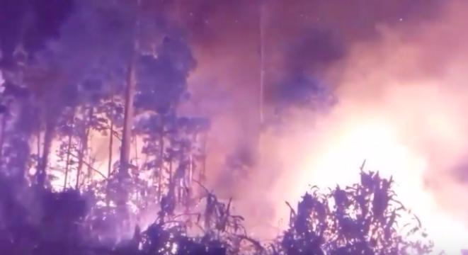 A Horrifying Compilation Of Clips Shows The Fires Currently Ravaging Brazil's Amazon Rainforest