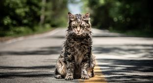 Is The New Remake Of Stephen King's 'Pet Sematary' Any Good? Here's What The Reviews Have To Say