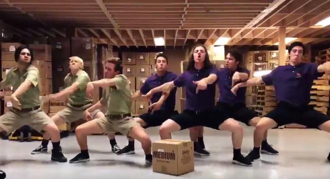 if you were wondering what a fedex  ups employee dance