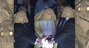 These Moth Memes Are The Light Of Our Lives Right Now