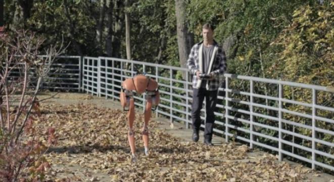 Should Robots Have Legs? An Investigation
