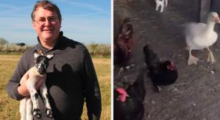 This British Farmer Didn't Know His Wholesome TikTok Account Was Going Viral