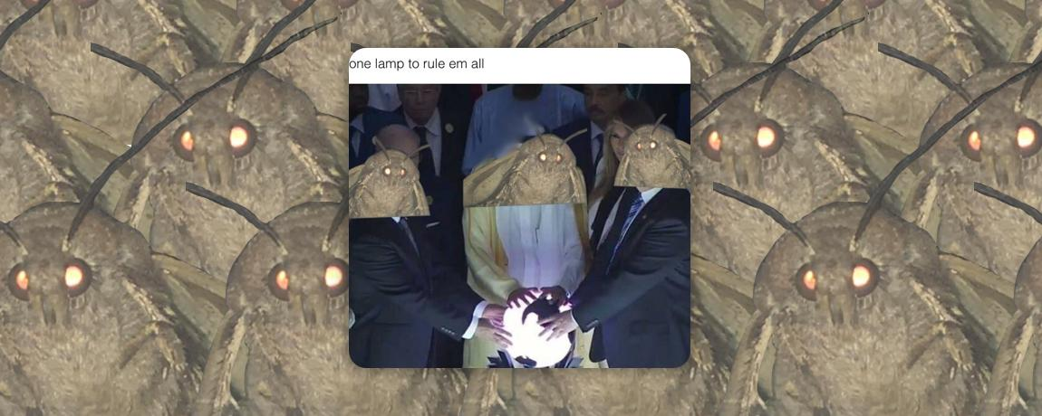 These Moth Memes Are The Funniest Weirdest Things On The Internet