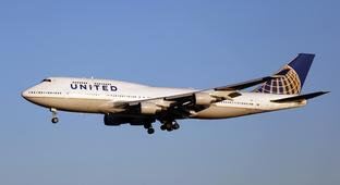 One Day After Dog Died In Overhead Bin, United Mistakenly Flew Another Dog To Japan