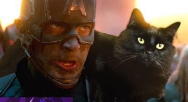 A YouTuber Inserted His Cat Into The 'Avengers: Endgame' And The Result Is Amazing
