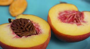 The Peaches Are Especially Good In 2018, You Should Have One