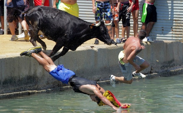 Image: People jump with a bull into the sea during the traditional running of bulls at Denia's harbor, near Alicante, on July 8, 2013.