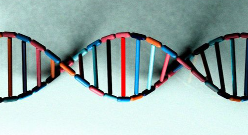 The Trouble With Epigenetics, The Trendy Topic Of 'Inherited Trauma'