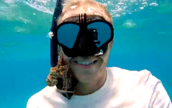 Diver Somehow Stays Nonchalant As A Tiny Octopus Pokes Around In His Mouth