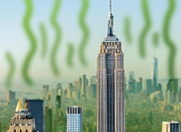 How Did New York City Get Its Legendarily Bad Odor?