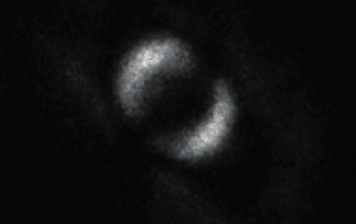 This Photograph Could Disprove A Long-Held Theory By Albert Einstein