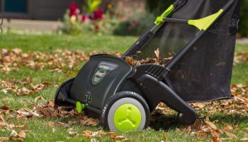 Rakes Are For Chumps — Here Are Four Ways To Clear Leaves Like A Champ