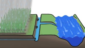 The Secret Sewers Under Farmland Help Crops But Can Have A Negative Impact On The Environment