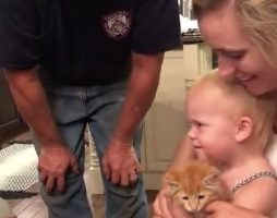 Kitten Tears Family Apart In Acrimonious Exchange Between Two Youngsters