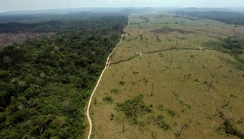 The Lawless Frontier At The Heart Of The Burning Amazon