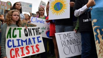 Live Updates From The Global Climate Strike