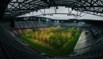 Forest In A Soccer Stadium Outrages Austria's Far Right