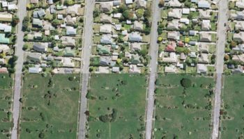 Red To Green: The Stark Evolution Of A City's Abandoned Acres