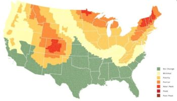 Interactive Fall Foliage Map Shows Where And When Leaves Will Change In The United States