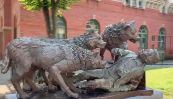 Prankster Leaves Sculptures Of Wolves Mauling A Tourist In New York City Parks