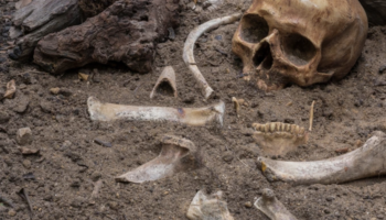 Turns Out Ancient Humans Basically Used Bones As Tupperware