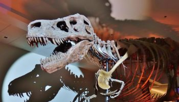 How Scientists Are Recreating Dinosaur Breath