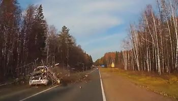 Tree Falls On Top Of A Car In A Shocking Moment Caught On Camera
