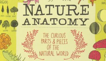 Create A New Generation Of Nature Enthusiasts With 'The Curious Parts and Pieces of the Natural World'