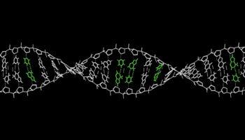 A New Crispr Technique Could Fix Almost All Genetic Diseases