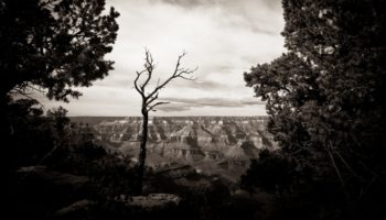 Uranium Scare Exposes Grand Canyon's Toxic Work Culture