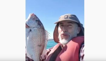 New Zealand Man On A Boat Provides Amazing Wisdom In Less Than A Minute