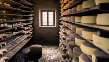 Why Are Americans Afraid Of Eating Raw Milk Cheese?