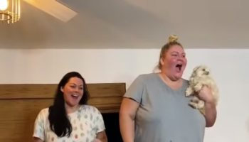We Regret To Inform You That We've Found The Worst Gender Reveal Of All Time