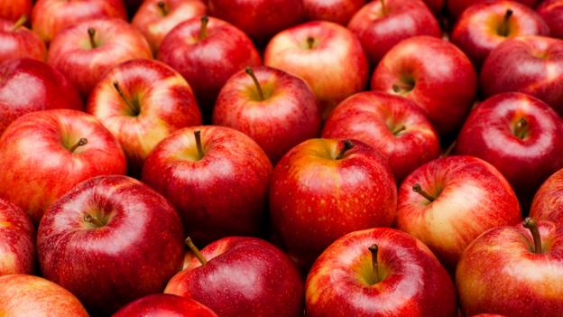Could Red Apples Die Out?