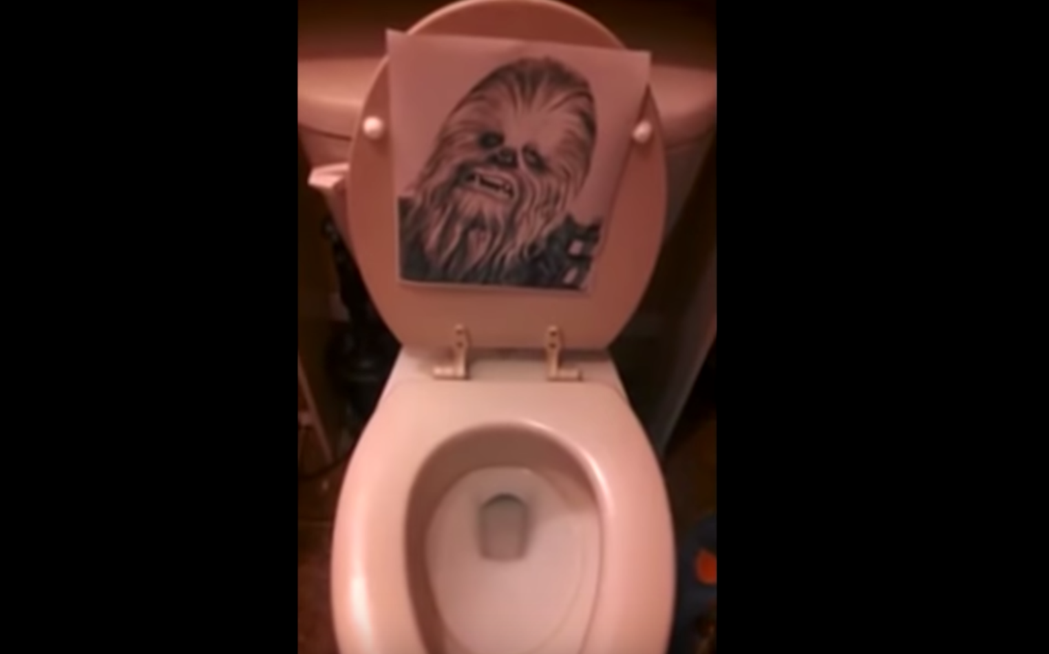 When Your Toilet Sounds Like Chewbacca, It's Time To Call The Plumber
