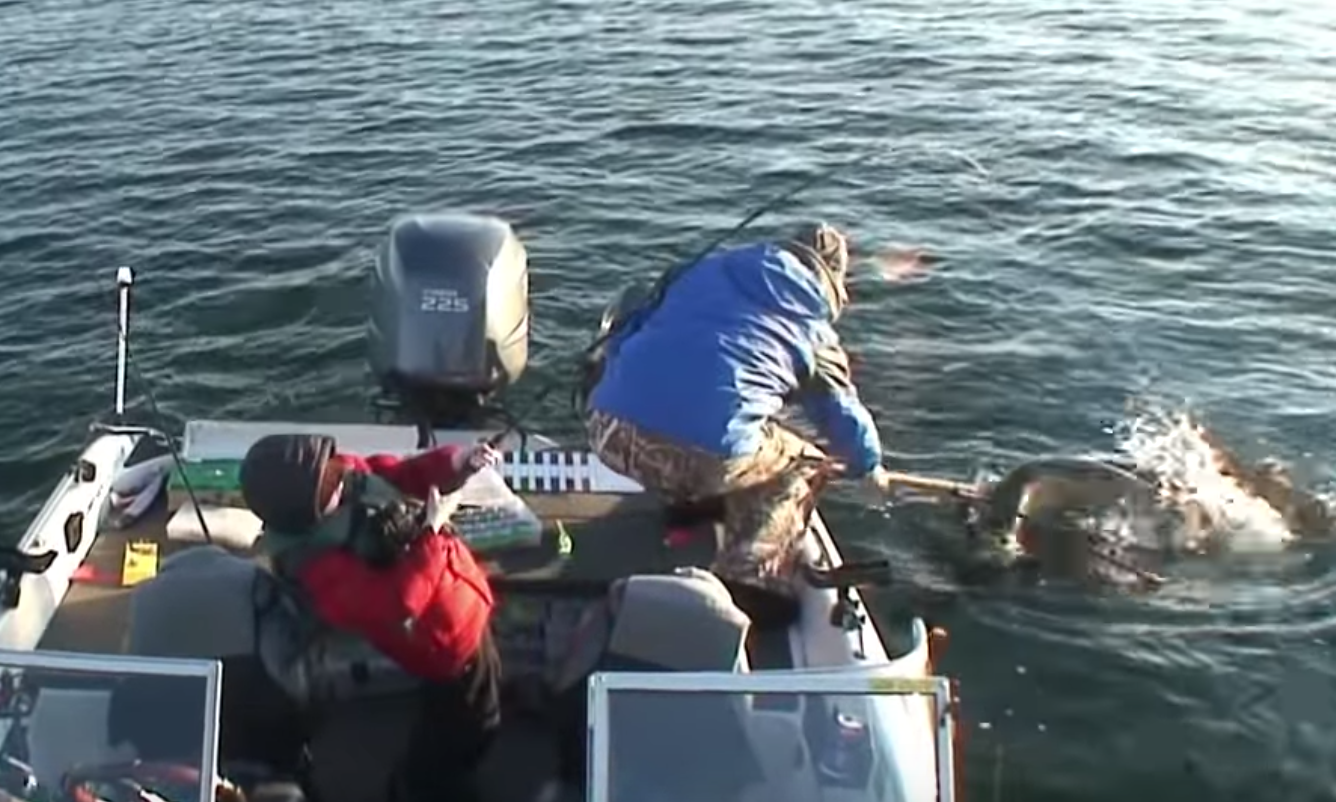 8-Year-Old Boy Reels In A Monster Muskie Fish Almost As Big As He Is