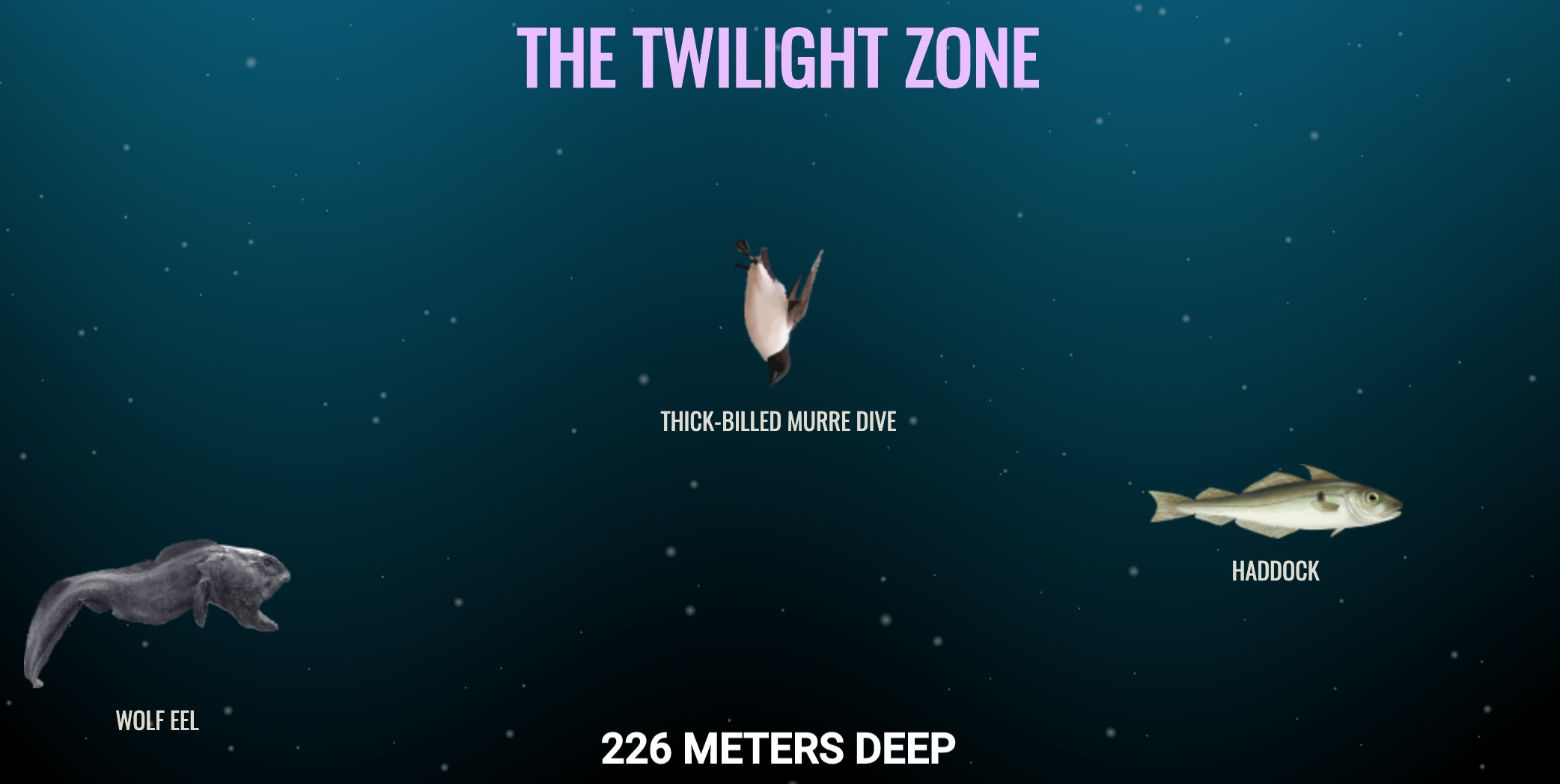 This Scrolling Map Of The Ocean's Depths Will Make You Realize How Truly Ginormous Our Planet Is