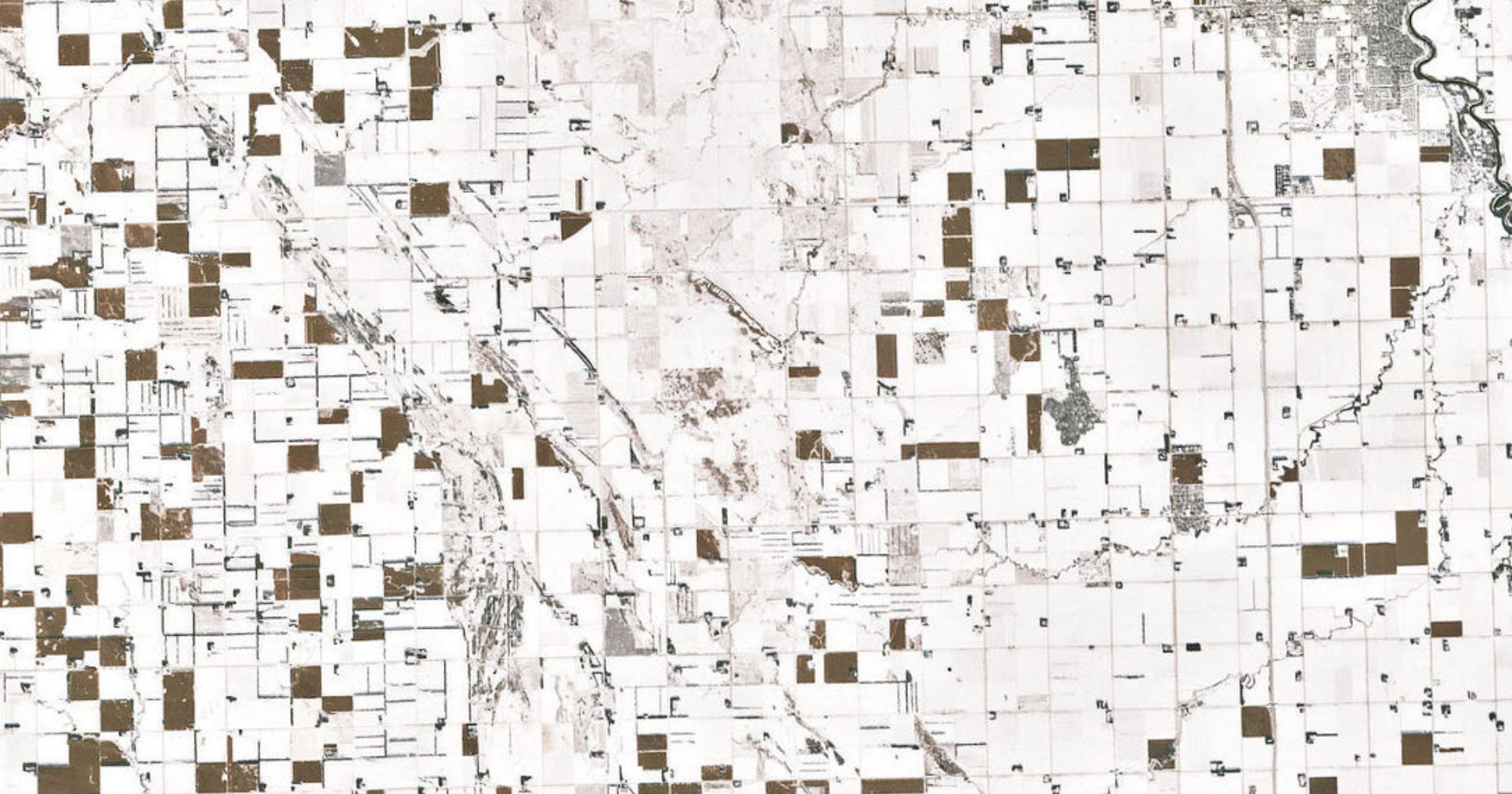 Endless Fields Of Unharvested Corn, As Seen From Space