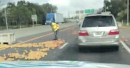 Motorists Witness Grapefruit Catastrophe On The Freeway