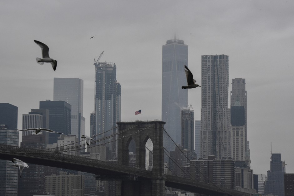 NYC Is Making Its Buildings Bird-Friendly
