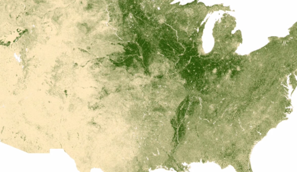 An Absolutely Fascinating Time-Lapse Of Two Years Of Photosynthesis In The US