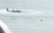 Motorist Shocked To See Dog Doing Donuts On A Motorboat While Owner Watches In Horror