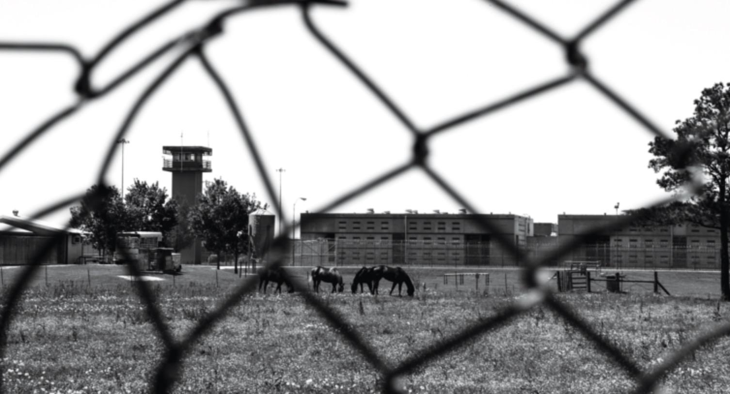The Prison Inside Prison