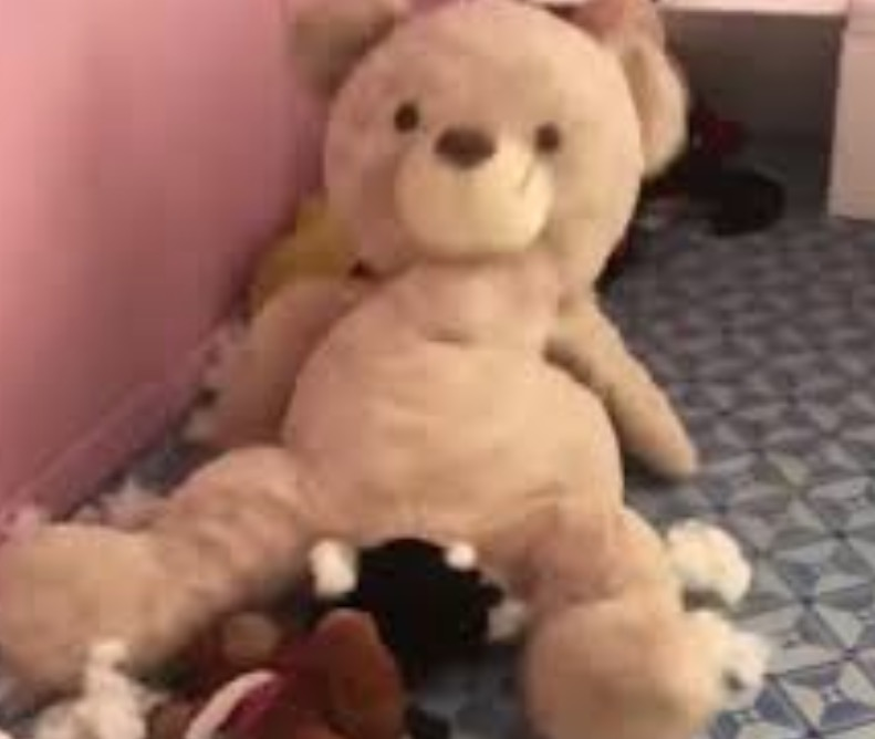 Owner Shocked To Find Their Beagle Puppy Got Trapped Inside Giant Stuffed Teddy Bear
