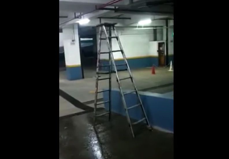 We're Not Quite Sure How This Ladder Is Doing This Either