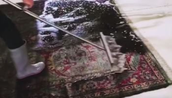 The Way These Dirty Rugs Get Professional Cleaned Is Deeply Therapeutic
