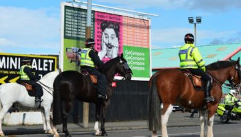 Scottish Soccer Fan Jailed After Going On Horse Punching Spree