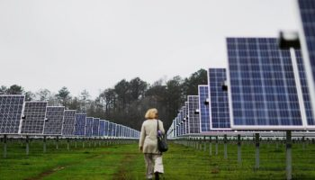 Jimmy Carter Put Solar Panels on His Farmland And They're Now Powering Half Of His Georgia Hometown